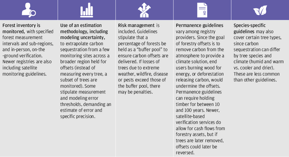 Table lists how forestry carbon offset standards work and could be improved, from monitoring forest inventory to creating guidelines by type of tree species.